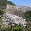 鳥取城跡のみどころ
