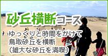 鳥取砂丘・横断コース