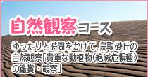 鳥取砂丘・自然観察コース