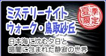 夏季限定・夜の砂丘観察会(定時観光)