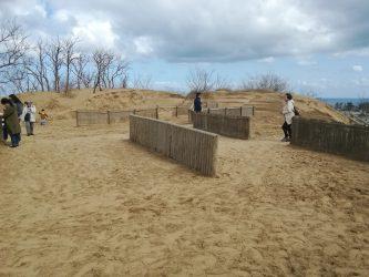 鳥取砂丘に春の訪れ