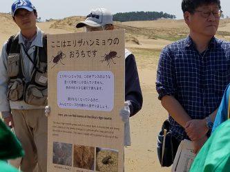 鳥取砂丘の希少昆虫の保護活動