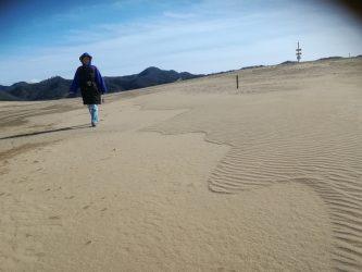 冬の鳥取砂丘の魅力(楽しみ方)